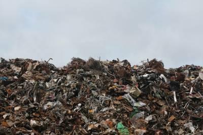 Надо меньше мусорить: власти проведут в России «генеральную уборку»