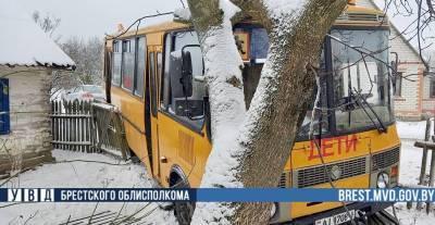 Фотофакт. В Брестском районе в аварию попал школьный автобус с детьми