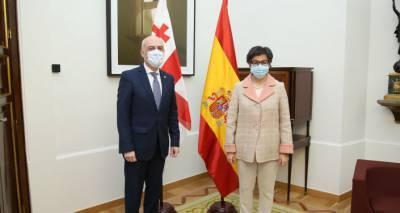 Коронавирус и политика - о чем говорили главы МИД Грузии и Испании