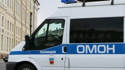 Неизвестный обнажил заднюю часть перед участниками протеста в Краснодаре