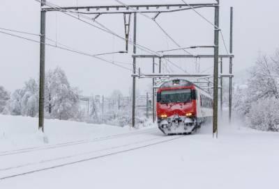 Мужчина погиб под колесами поезда в Приморском районе Санкт-Петербурга