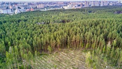 Разрешение на строительство 24-этажных свечек в Челябинском бору выдали незаконно