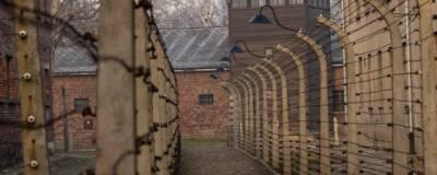 На вебинаре для учителей Ленобласти профессор назвал Холокост мифом
