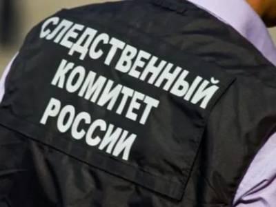 Дело о доведении до самоубийства завели в Новосибирске после гибели семиклассницы