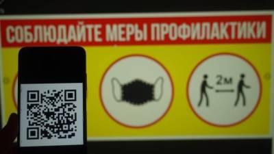 Песков заявил о праве регионов самостоятельно вводить допуск по QR-кодам в аэропортах