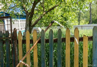 Садовые домики теперь можно строить без оглядки на надзорные органы