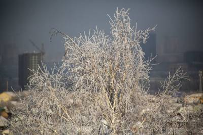 Потепление до -2 градусов нагрянет в Омск к концу недели