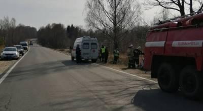 Врезался в дерево на полном ходу: в ДТП под Ярославлем пострадал водитель