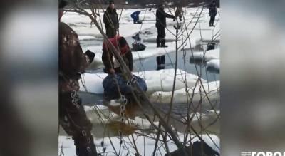 """На Волге несколько рыбаков плавали на маленьких льдинах: """"Теперь точно пора закрывать сезон"""""""