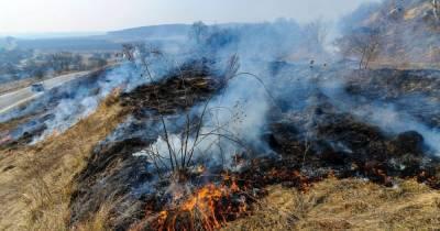 Жгла сухостой и оказалась в реанимации: в Закарпатской области серьезно обгорела женщина
