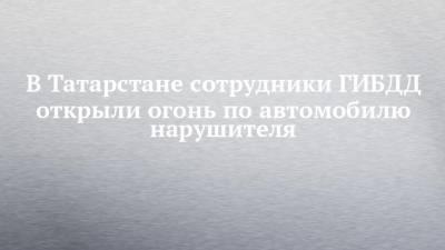 В Татарстане сотрудники ГИБДД открыли огонь по автомобилю нарушителя