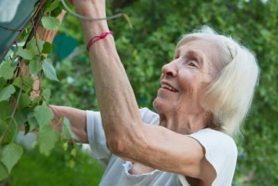 Под Красноярском трое сибиряков две недели обкрадывали 90-летнюю старушку