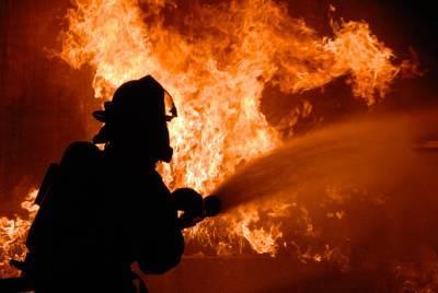 В Астраханской области за сутки сгорели хозпостройка и автомобиль