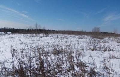 В Калязинском районе длительное время зарастают свыше 45 гектаров сельхозугодий