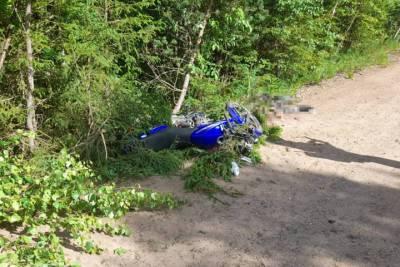 В Плесецком районе 41-летний мотоциклист погиб при столкновении с деревом