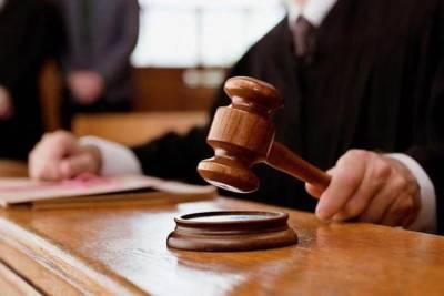 Житель Онежского района признан виновным в истязании малолетней дочери супруги