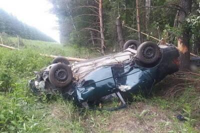 В Курганской области автомобиль съехал в кювет и перевернулся
