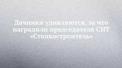 Дачники удивляются, за что наградили председателя СНТ «Станкостроитель»