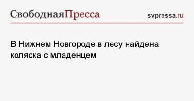 В Нижнем Новгороде в лесу найдена коляска с младенцем